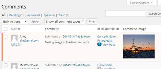 نحوه اپلود تصاویر توسط کاربران در وردپرس